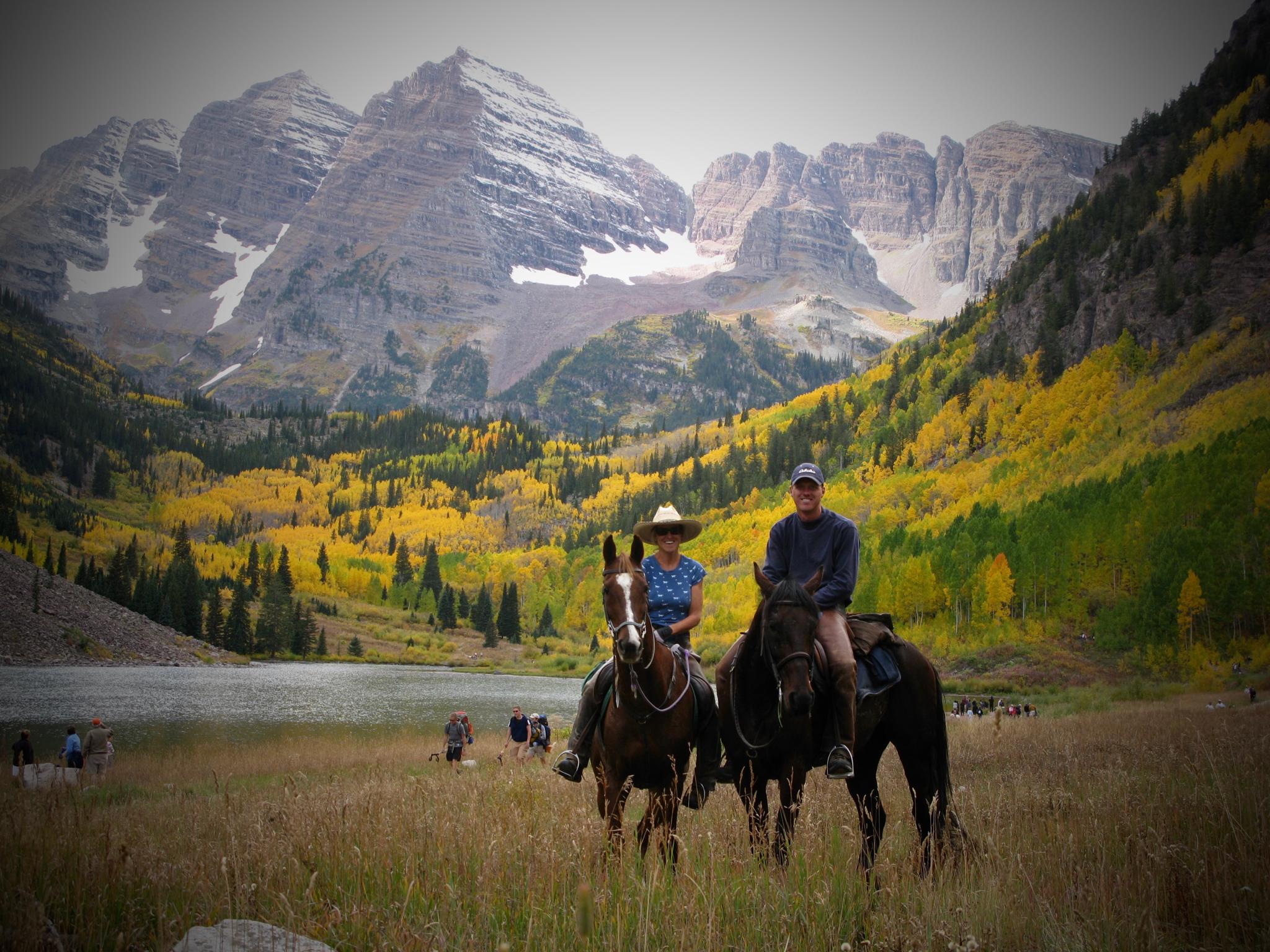 Rocky Mountain Equine Clinic - Veterinarian in Colorado